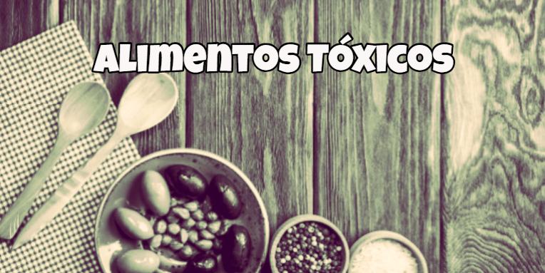 alimentos toxicos para perros