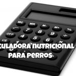 calculadoras de comida de perros
