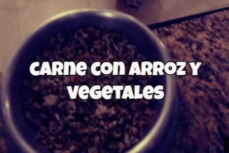 receta de carne molida para perros